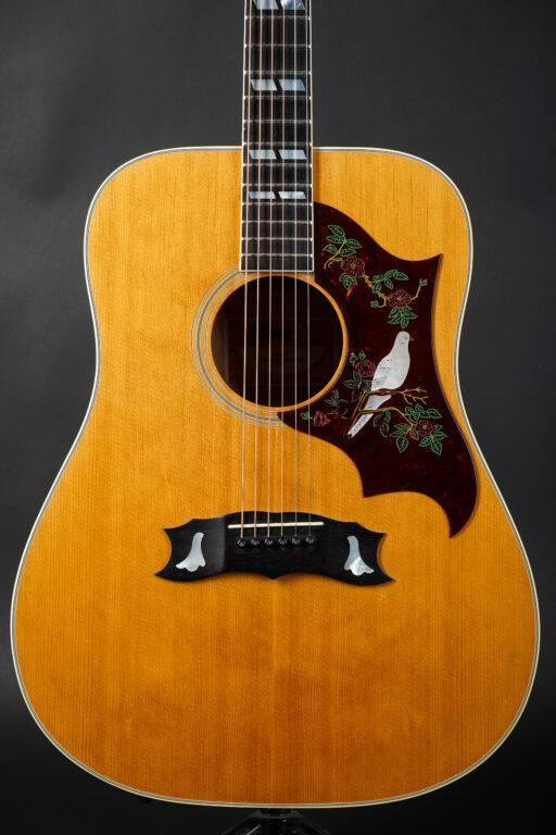 1977 Gibson Dove Custom - Natural